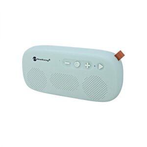 Bluetooth преносима колонка New Rixing 4012
